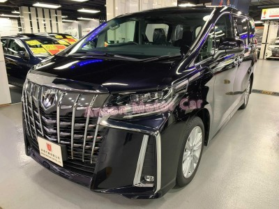 ALPHARD S,豐田 Toyota,2019,other:紫藍|,7,C168907