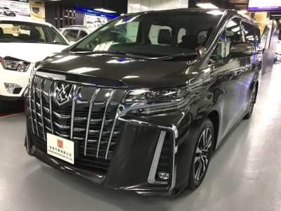 ALPHARD FACELIFT 3.5 SC,豐田 Toyota,2019,BROWN 啡色,7,C022 / C173296