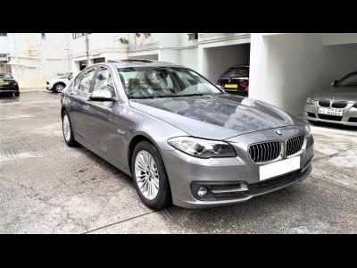 520iA FACELIFT,寶馬 BMW,2014,GREY 灰色,5